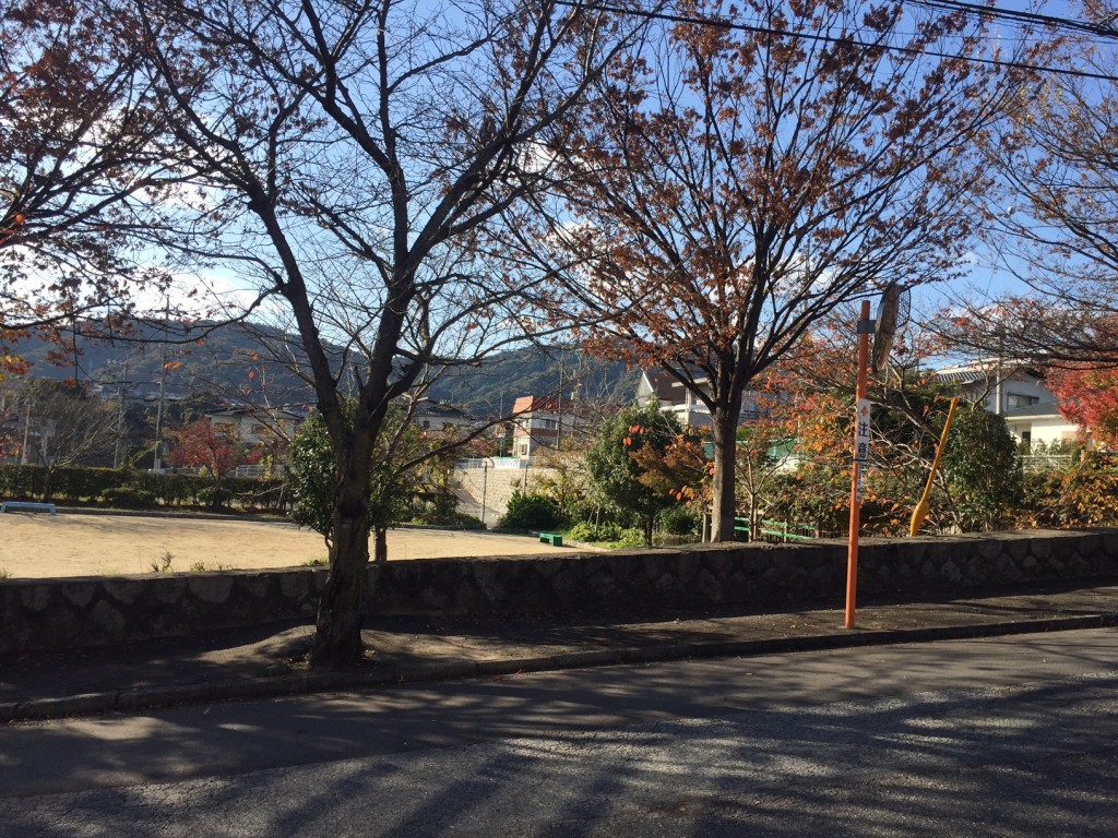 ひかるの家から見た公園風景